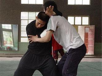 Tui Shou (Chen Ziqiang)
